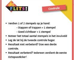 Flitscontroles